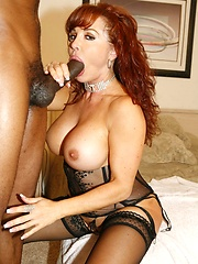 Latin ass get hammed full of thick cock